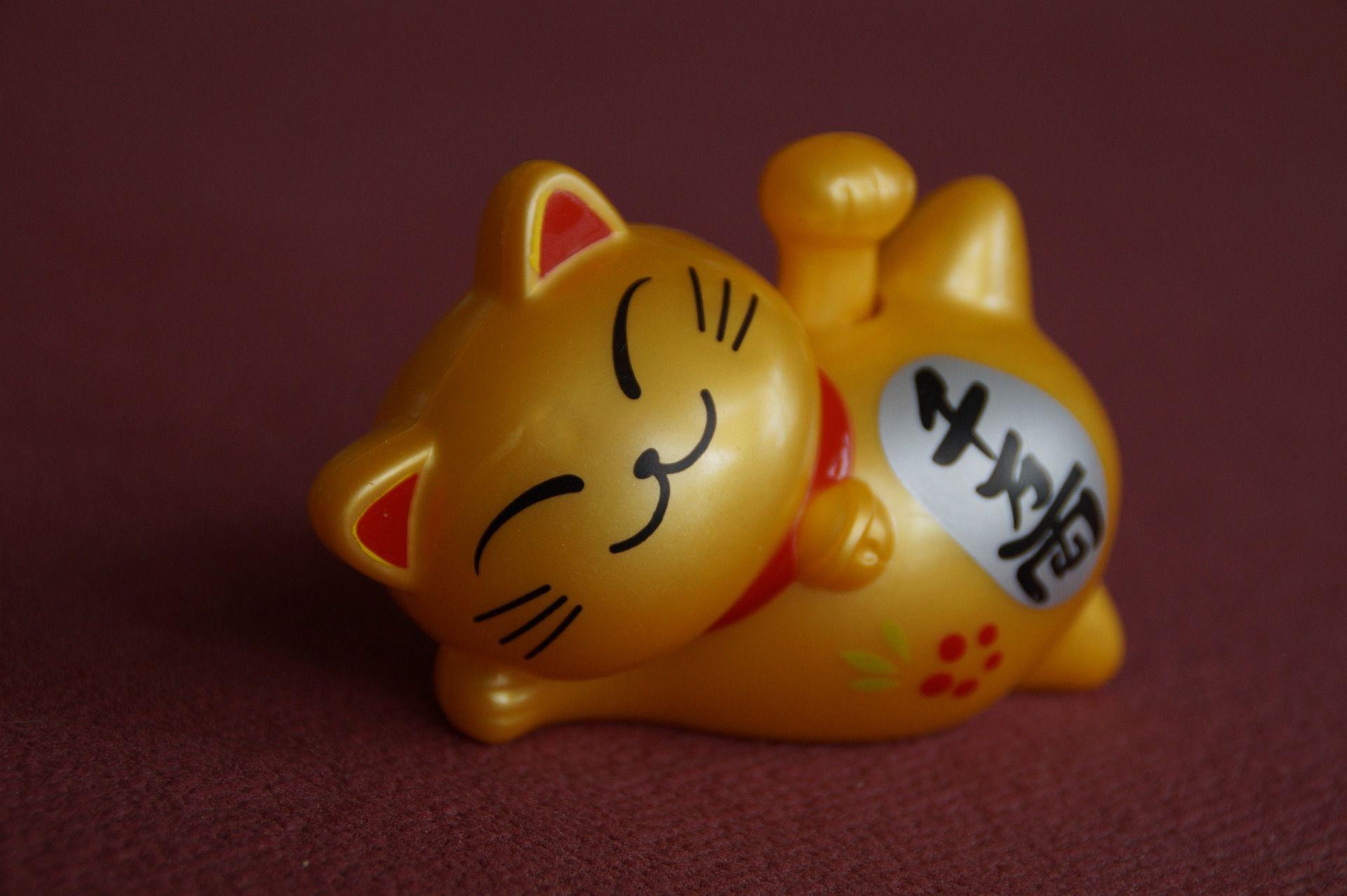 lucky-cat-4246986_1920